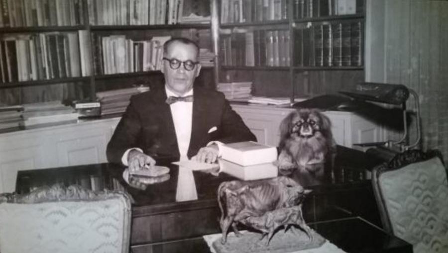 guimaraes-rosa-escritor-medico-e-diplomata-escritorio-cachorro